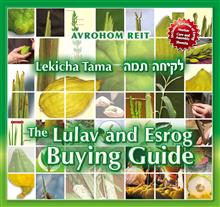Lekicha Tama - The Lulav and Esrog Buying Guide